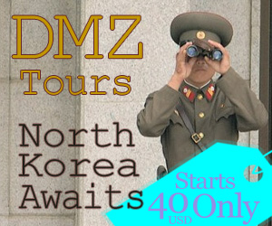 DMZ Tour Reservation 300×250
